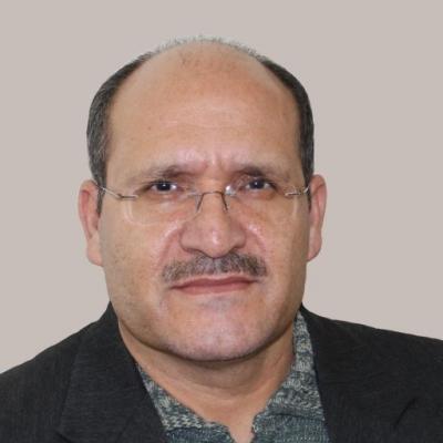 دکتر ناصر گودرزی